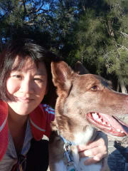 Dog carer/doggie B&B in North Ryde. Nurturing, attentive, fun!