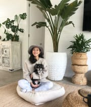 Reliable and loving pet sitter/walker!