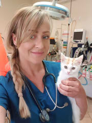 Friendly, reliable & experienced Veterinary Nurse available in Morningside