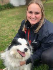 Active, reliable & caring pet sitter