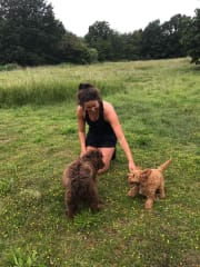 Friendly and fun pet sitter!