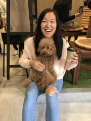 Caring and reliable dog lover in Central Sydney