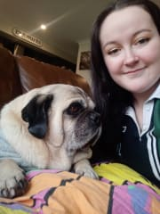 Confident pet sitter, happy to look after your furry friend