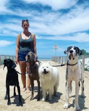 Happy, fun and energetic dog lover!