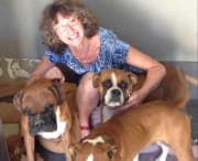 Experienced caring pet sitter with references - Mentone VIC