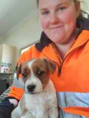 I am the pet carer extraordinaire!