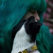 Passionate Pet Carer