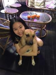 Fun-loving and caring pet sitter (Abundant TLC) ! :)