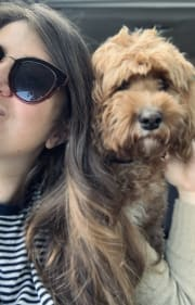 Reliable and Caring Petsitter in Pyrmont