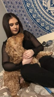 Friendly and charismatic pet carer in Adelaide.