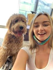 Fun and Energetic Irish Dog-Mad Lady!
