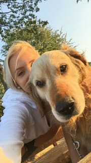 Caring and active dog sitter Eastern suburbs
