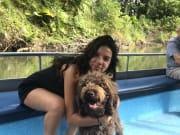 Dog Lover! Dog Walking & Sitting
