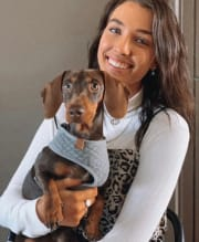Flexible and Fun-Loving Pet Sitter