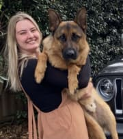 Trustworthy animal lover for House Visiting and Dog Walking