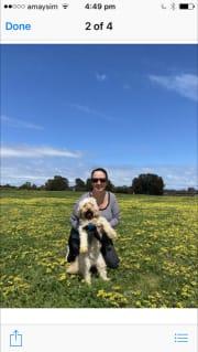 Mornington Peninsula Female Dog Sitter available