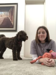 Reliable and Caring Pet Sitter!