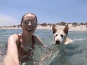 Reliable, Friendly & Trustworthy Pet Sitter
