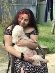 Caring and Reliable Sitter that Loves Dogs!