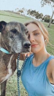 Western Sydney Pet Walker & Carer
