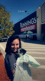 Reliable and reasonable pet sitter :)