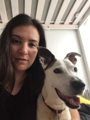 Walk-loving Dog Sitter in the Inner West