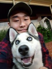 Animal Loving Dog Walker Looking For Pa(w)l