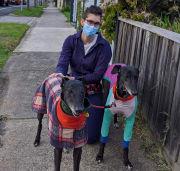 Dog walking, training and pet sitting