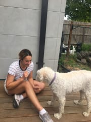 Kind and Reliable Pet Sitter/Walker