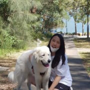 Reliable and caring dog walker (Huge dog lover!)