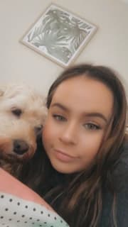 Admiring & Affectionate Dog Lover