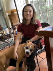 Dependable, Gentle, and Caring Pet Sitter