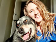 Reliable and caring pet sitter/walker in Clifton Springs.