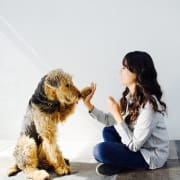 Responsible, Reliable and Caring Pet Sitter (Zetland)
