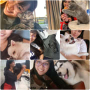 Responsible and Loving Pet Sitter