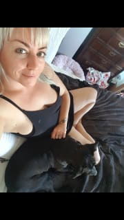 Reliable animal loving pet sitter in the NSW Northern Rivers