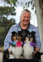 Mature pet sitter with 15 years dog training experience.