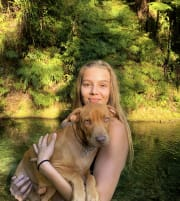 Reliable and flexible pet sitter who loves animals