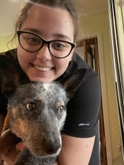 Flexible, reliable qualified and experienced pet sitter
