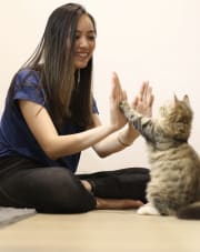 Reliable, attentive, caring and trustworthy animal lover based in Waterloo/Zetland.