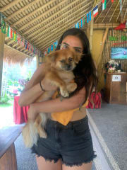 Responsible, trustworthy and loving pet sitter