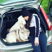 Mosman based dog loving gal