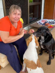 Family Friendly FurBaby Lover and Dog Fanatic