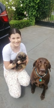 Natalie's Nurturing Pet Sitting Service