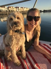 Family friendly pet sitting with 'Hugo the Spoodle' in Yarraville