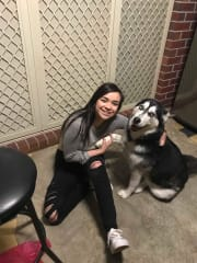 Reliable, Loving and Caring Pet Sitter