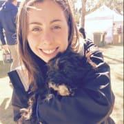 Huge dog lover in Seaford