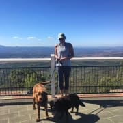 Trustworthy pet sitter Toowoomba area