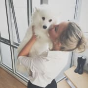 Dog Minding & Day Care with a Japanese Spitz!