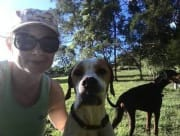 Active & work fromhome, dog, cat, horse, chicken friendly petsitter